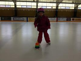 Change to Public Skate Schedule this Week